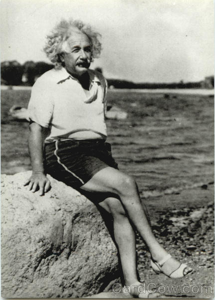 Alberteinsteinatbeach1945celebritie